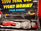 Mummified Full Body Pigmy (View 1)